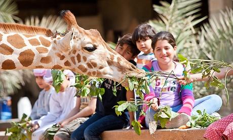 Abu Dhabi: Up to 2 Nights with Zoo Tickets